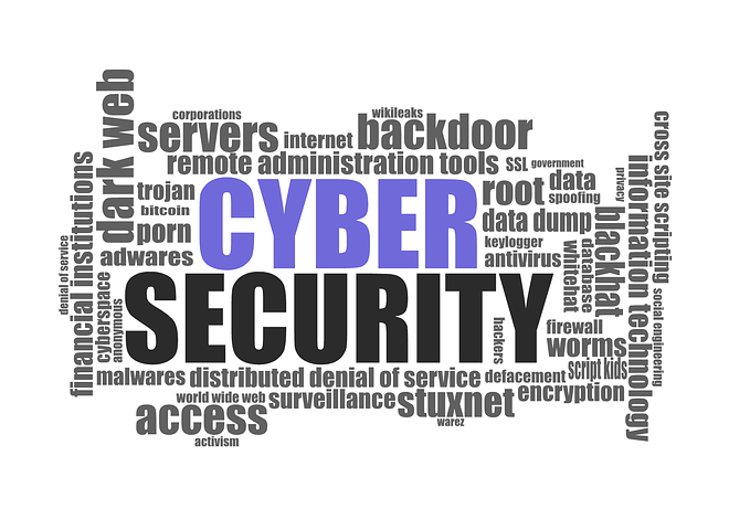 cyber-security-1784985__480.png